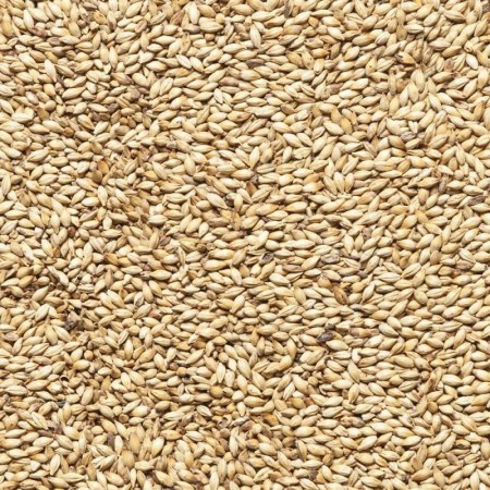 Malt Cara Gold en grains